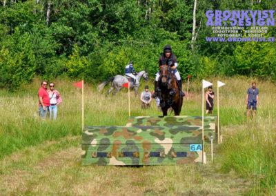 Arbottna Horse Show 23 juli 2016 _DSC_0008