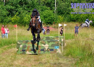 Arbottna Horse Show 23 juli 2016 _DSC_0013