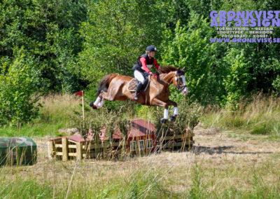 Arbottna Horse Show 23 juli 2016 _DSC_0015