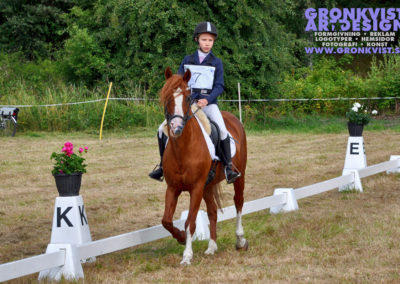 Arbottna Horse Show _DSC_0015