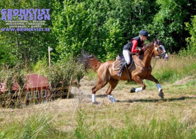 Arbottna Horse Show 23 juli 2016 _DSC_0017