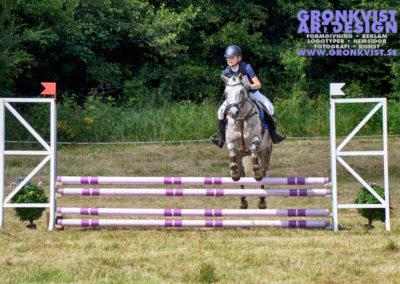 Arbottna Horse Show _DSC_0025