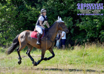 Arbottna Horse Show 23 juli 2016 _DSC_0027