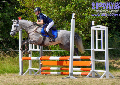 Arbottna Horse Show _DSC_0030