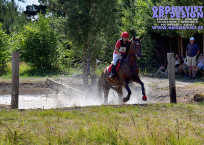 Arbottna Horse Show 23 juli 2016 _DSC_0036
