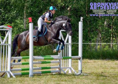 Arbottna Horse Show _DSC_0037