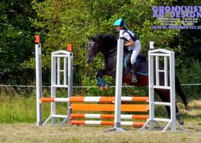 Arbottna Horse Show _DSC_0040