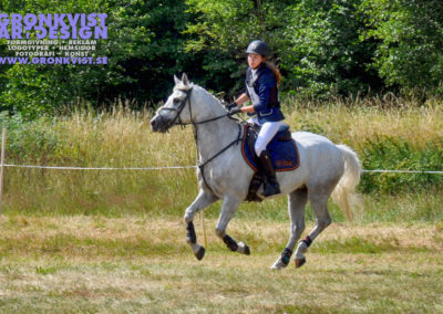 Arbottna Horse Show _DSC_0049