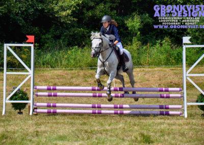 Arbottna Horse Show _DSC_0052
