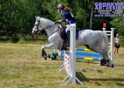 Arbottna Horse Show _DSC_0055