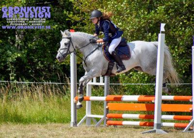 Arbottna Horse Show _DSC_0057