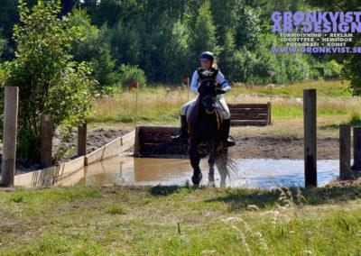Arbottna Horse Show 23 juli 2016 _DSC_0060