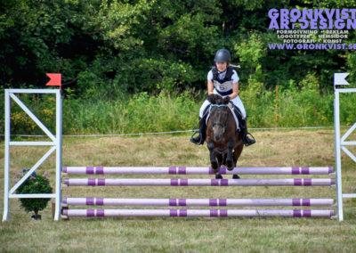 Arbottna Horse Show _DSC_0060