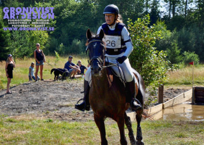 Arbottna Horse Show 23 juli 2016 _DSC_0063