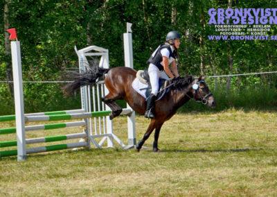 Arbottna Horse Show _DSC_0065