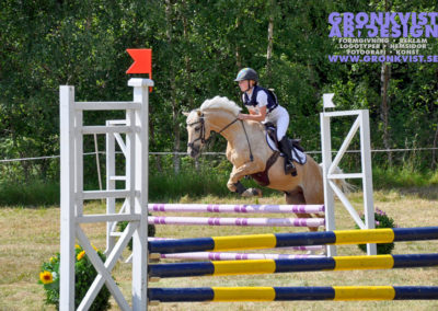 Arbottna Horse Show _DSC_0070