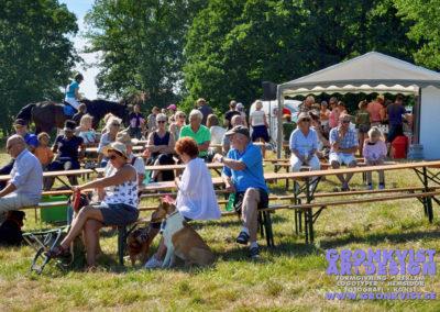 Arbottna Horse Show 23 juli 2016 _DSC_0074