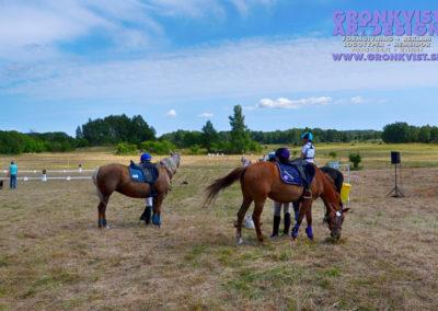 Arbottna Horse Show _DSC_0074
