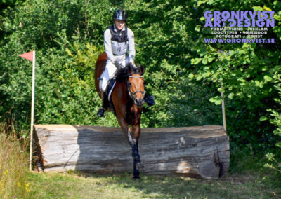 Arbottna Horse Show _DSC_0097