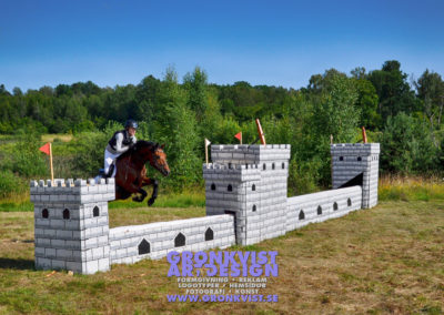 Arbottna Horse Show _DSC_0098