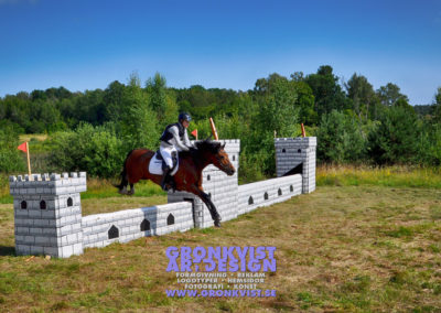 Arbottna Horse Show _DSC_0099
