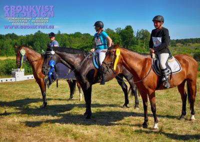 Arbottna Horse Show 23 juli 2016 _DSC_0101