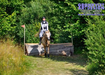 Arbottna Horse Show _DSC_0101