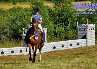 Arbottna Horse Show 23 juli 2016 _DSC_0105